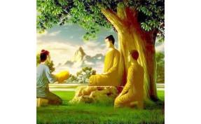 Sanghadana dibulan Kathina kepada 41 Anggota Sangha